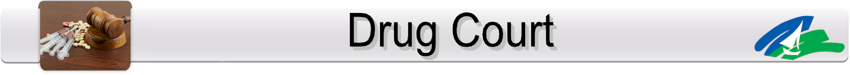 Seminole Drug Court Page Banner