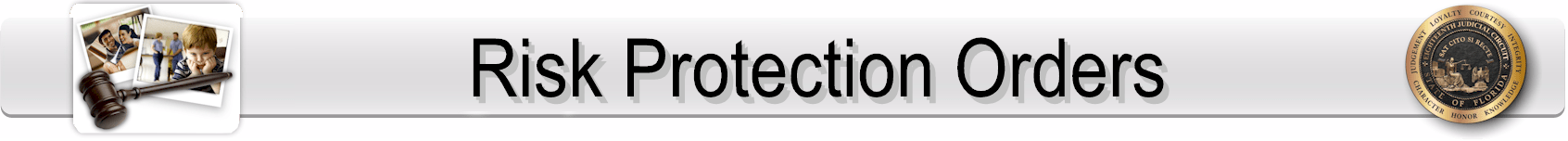 Risk Protection Orders